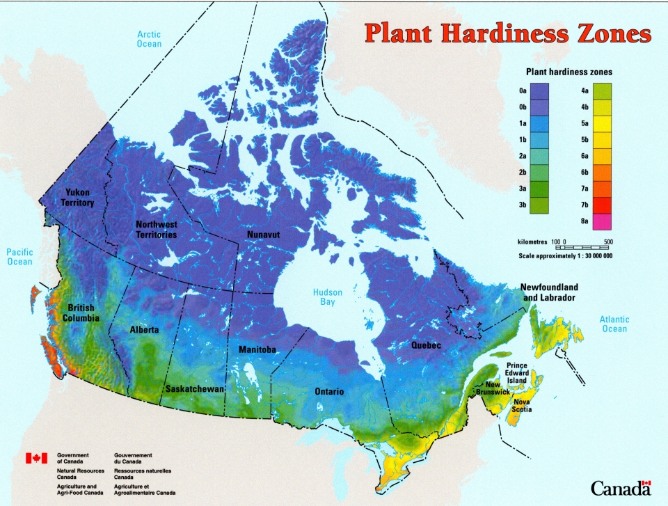 Map Of Canada Climate Grower Direct   Gardening with Grower Direct   Climate Zone Map