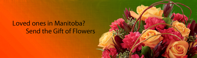 Flower Deliver in Manitoba by Grower Direct